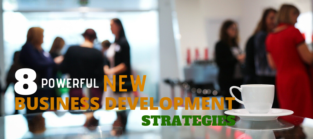 8 Powerful Business Development Strategies for your New Business to Shine Better