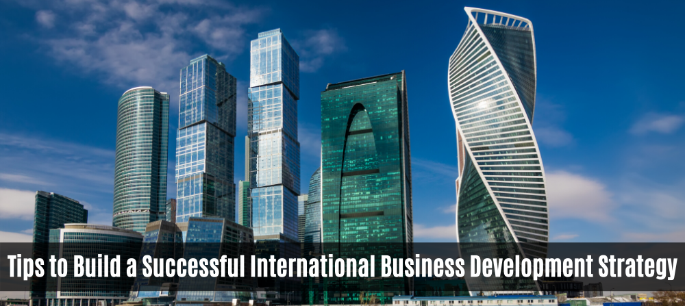Prime Necessities Of a Successful International Business Development Strategy